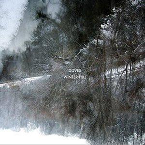 Doves-Winter-Hill-475419.jpg