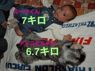20091010_0032.JPG