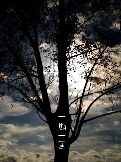 20101022_00250010001.jpg