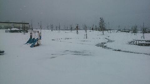 snowbus.jpg