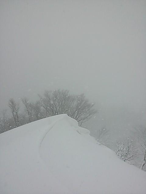 snowy weekend.JPG