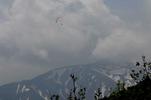 tsu2010.jpg