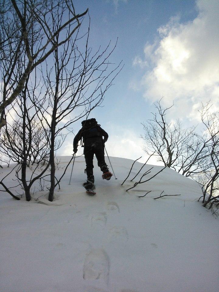winterskies.jpg