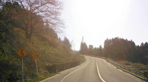 yakushi6.jpg